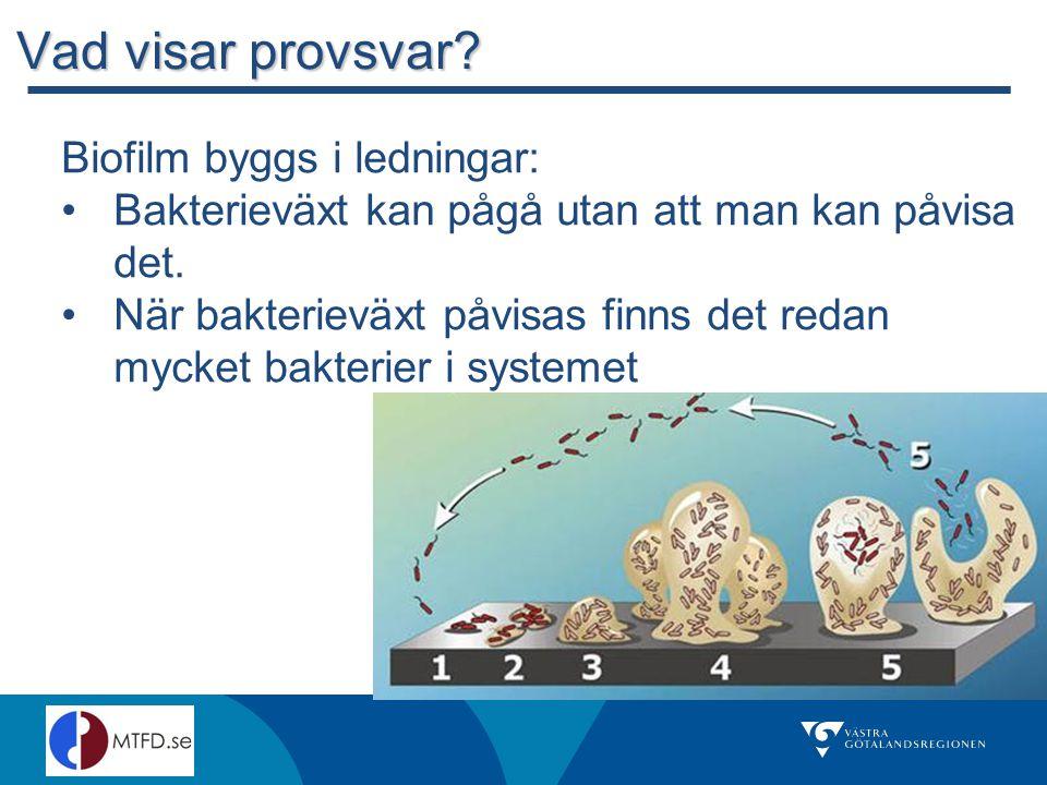Vad visar provsvar Biofilm byggs i ledningar: