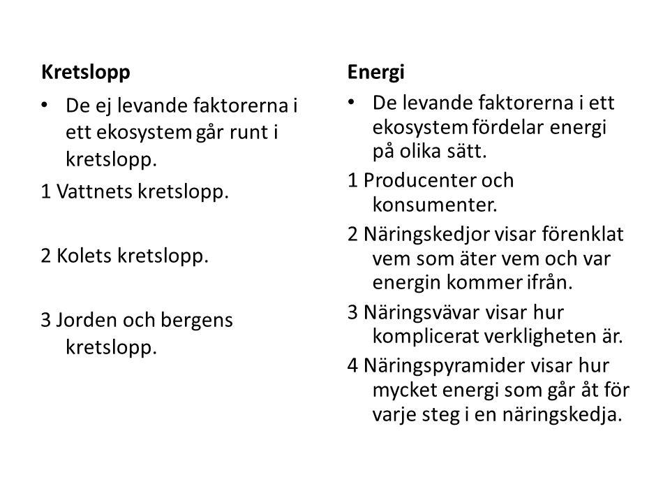 Kretslopp Energi. De ej levande faktorerna i ett ekosystem går runt i kretslopp. 1 Vattnets kretslopp.