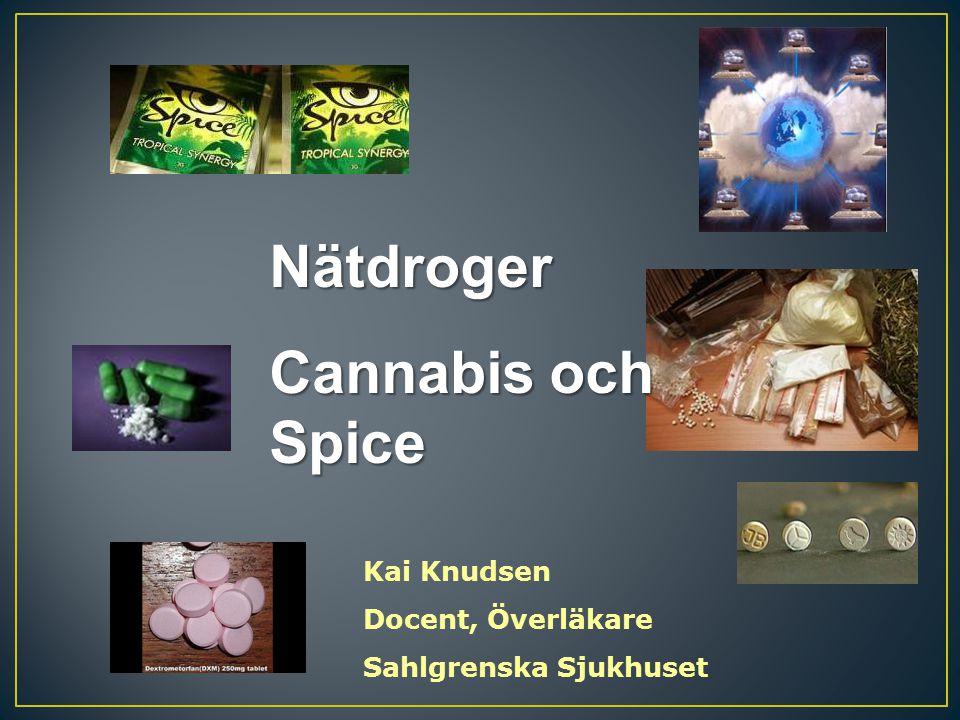 Nätdroger Cannabis och Spice Kai Knudsen Docent, Överläkare