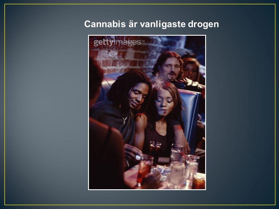 Cannabis är vanligaste drogen
