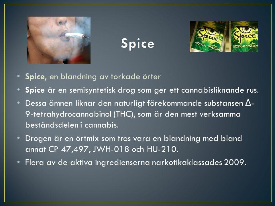 Spice Spice, en blandning av torkade örter