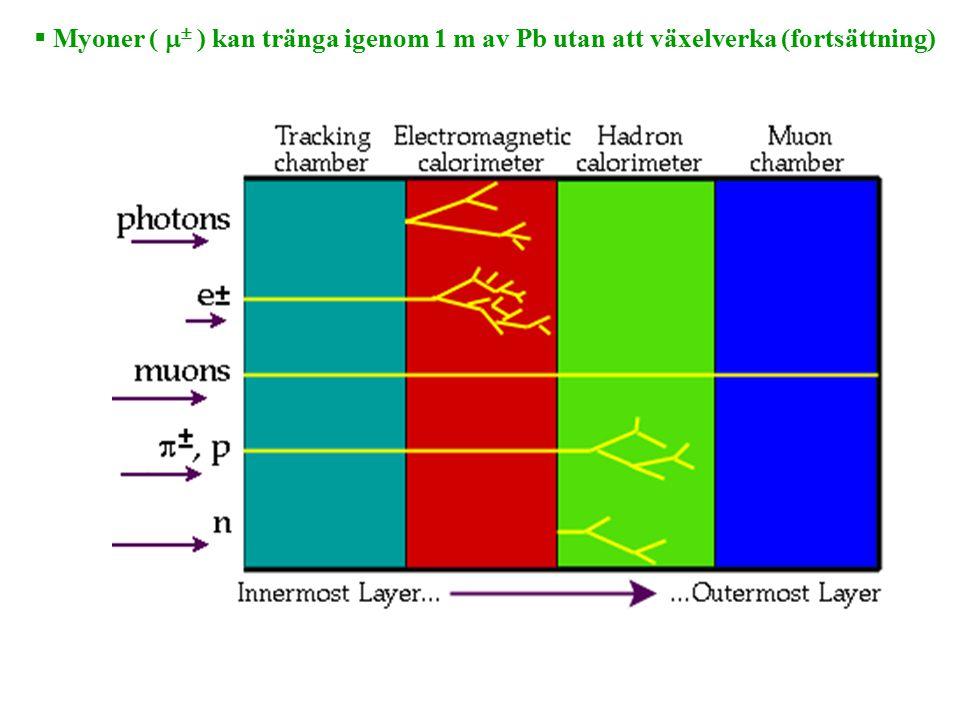 Myoner ( m ) kan tränga igenom 1 m av Pb utan att växelverka (fortsättning)