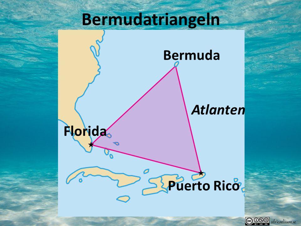 Bermudatriangeln Bermuda Atlanten Florida Puerto Rico