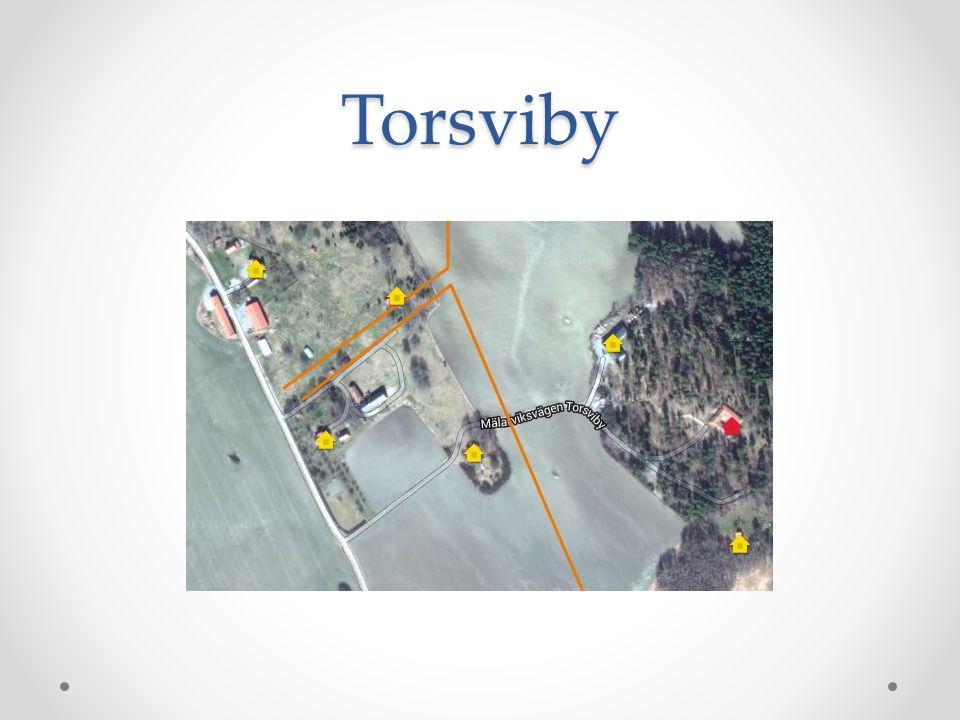 Torsviby