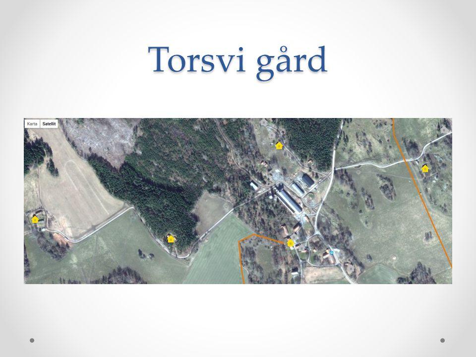 Torsvi gård