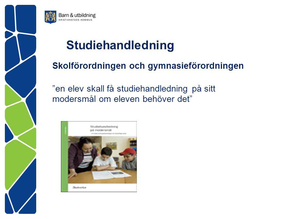 Studiehandledning Skolförordningen och gymnasieförordningen en elev skall få studiehandledning på sitt modersmål om eleven behöver det