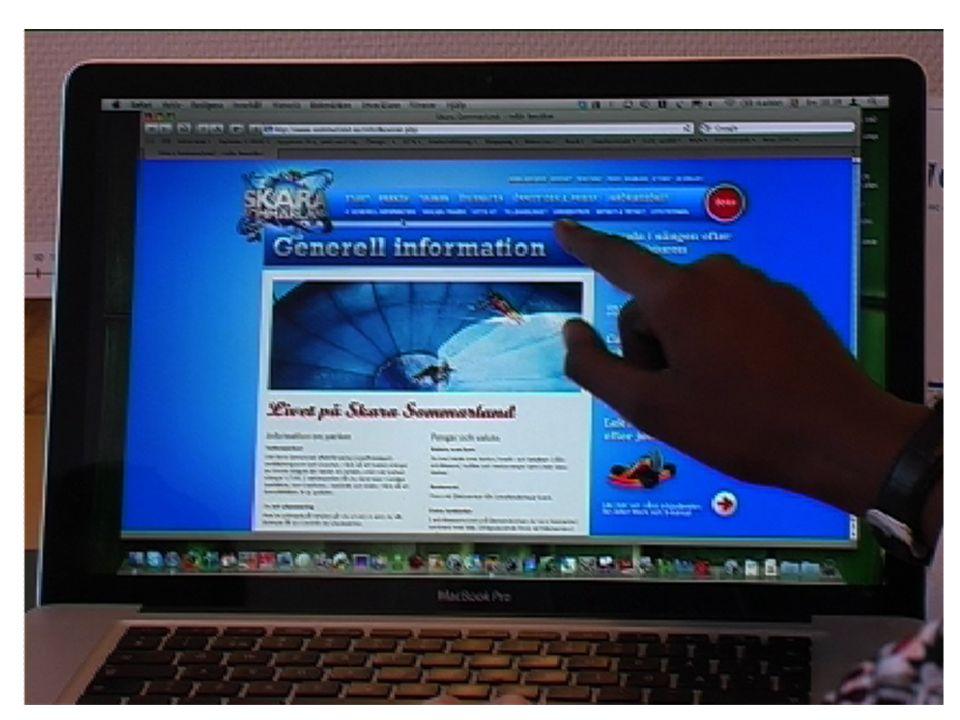 I en av studierna fick ett elevpar i taget samarbeta med uppgifter som krävde digital läsning på internet.