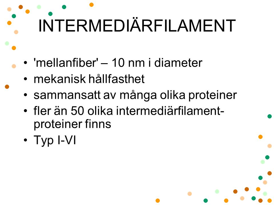 INTERMEDIÄRFILAMENT mellanfiber – 10 nm i diameter