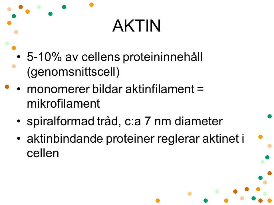 AKTIN 5-10% av cellens proteininnehåll (genomsnittscell)