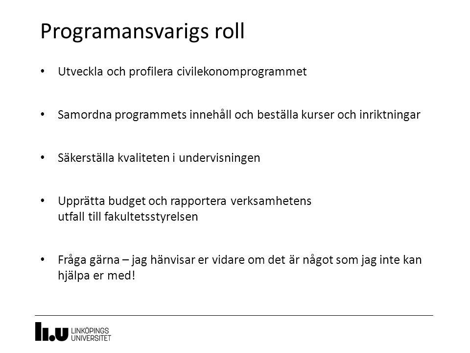 Programansvarigs roll