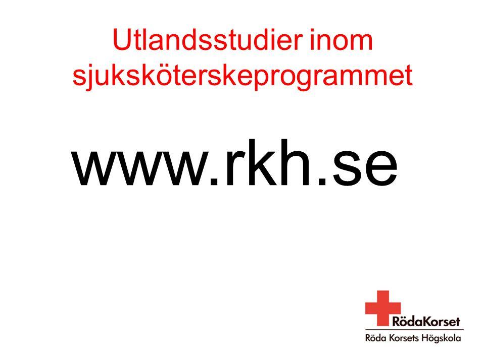 Utlandsstudier inom sjuksköterskeprogrammet