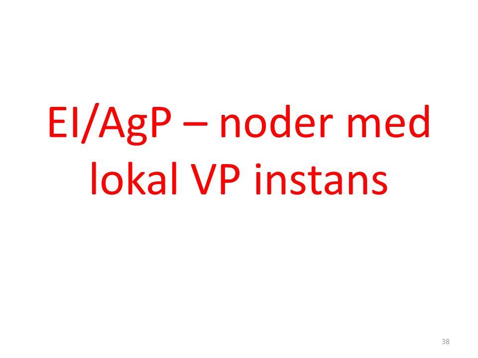 EI/AgP – noder med lokal VP instans