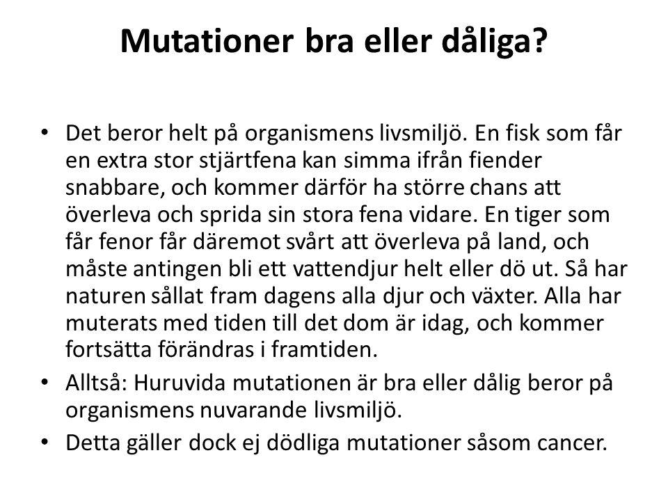 Mutationer bra eller dåliga