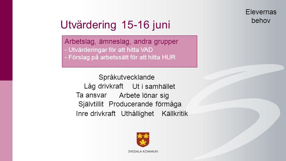 Utvärdering 15-16 juni Elevernas behov