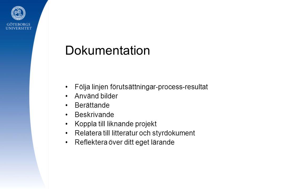 Dokumentation Följa linjen förutsättningar-process-resultat