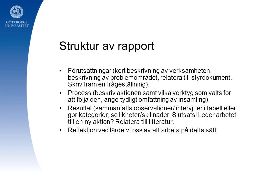 Struktur av rapport