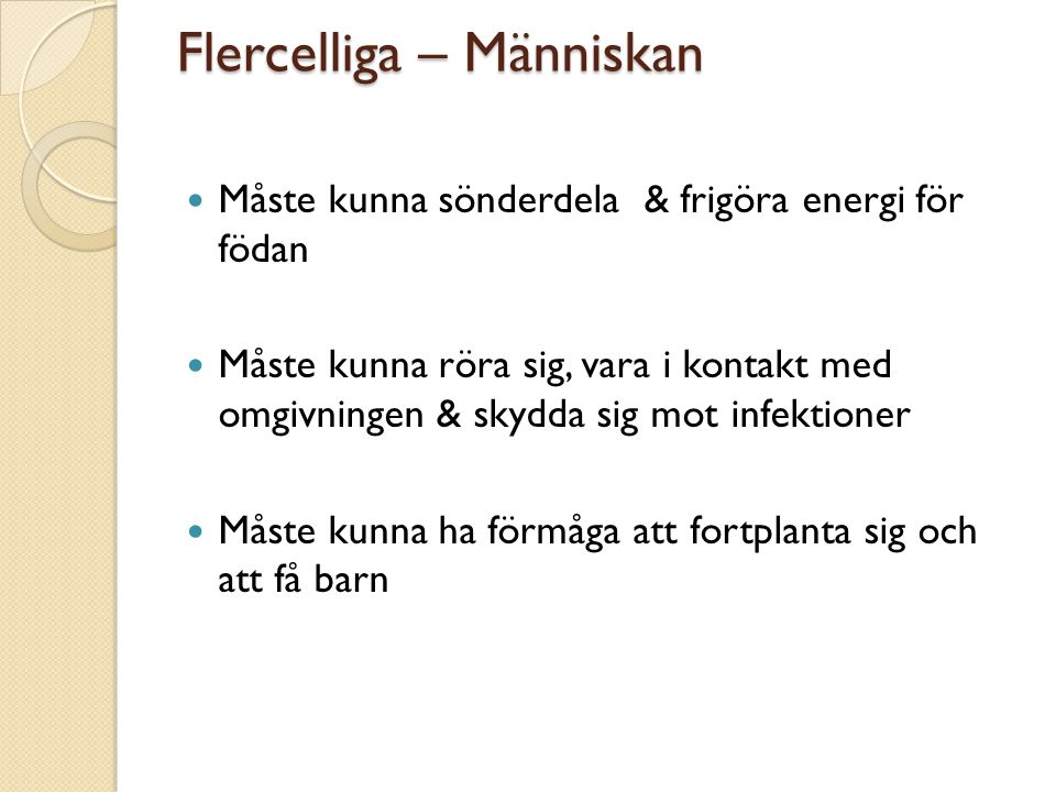 Flercelliga – Människan