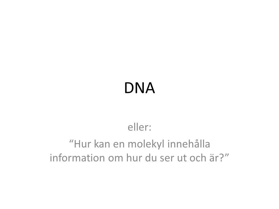 Hur kan en molekyl innehålla information om hur du ser ut och är