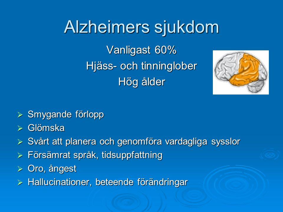 Hjäss- och tinninglober