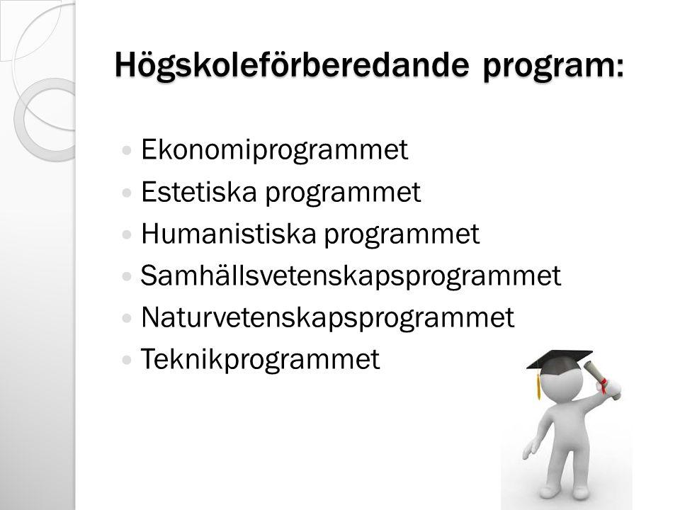 Högskoleförberedande program: