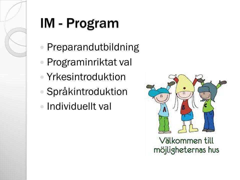IM - Program Preparandutbildning Programinriktat val Yrkesintroduktion