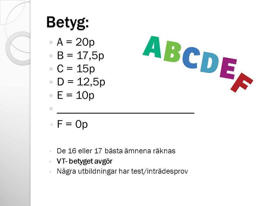 Betyg: A = 20p B = 17,5p C = 15p D = 12,5p E = 10p