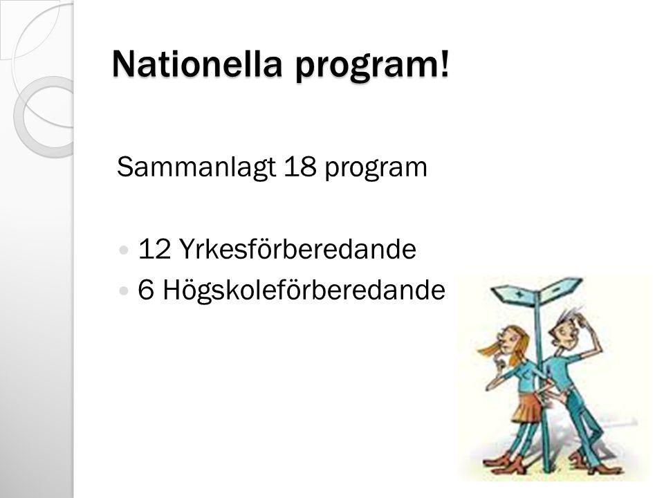 Nationella program! Sammanlagt 18 program 12 Yrkesförberedande