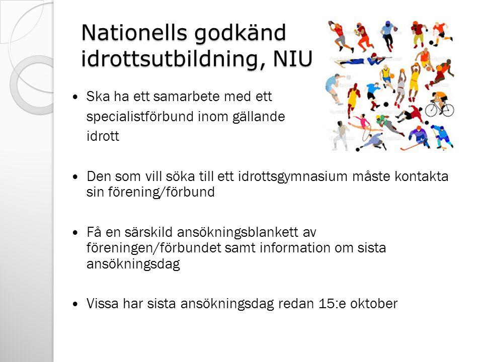 Nationells godkänd idrottsutbildning, NIU