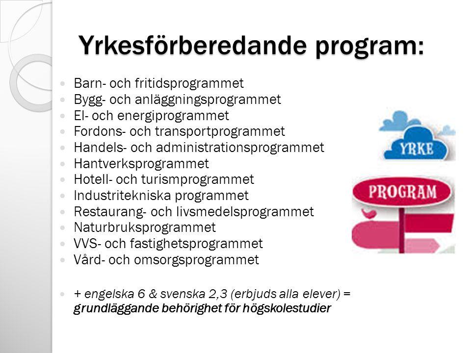 Yrkesförberedande program: