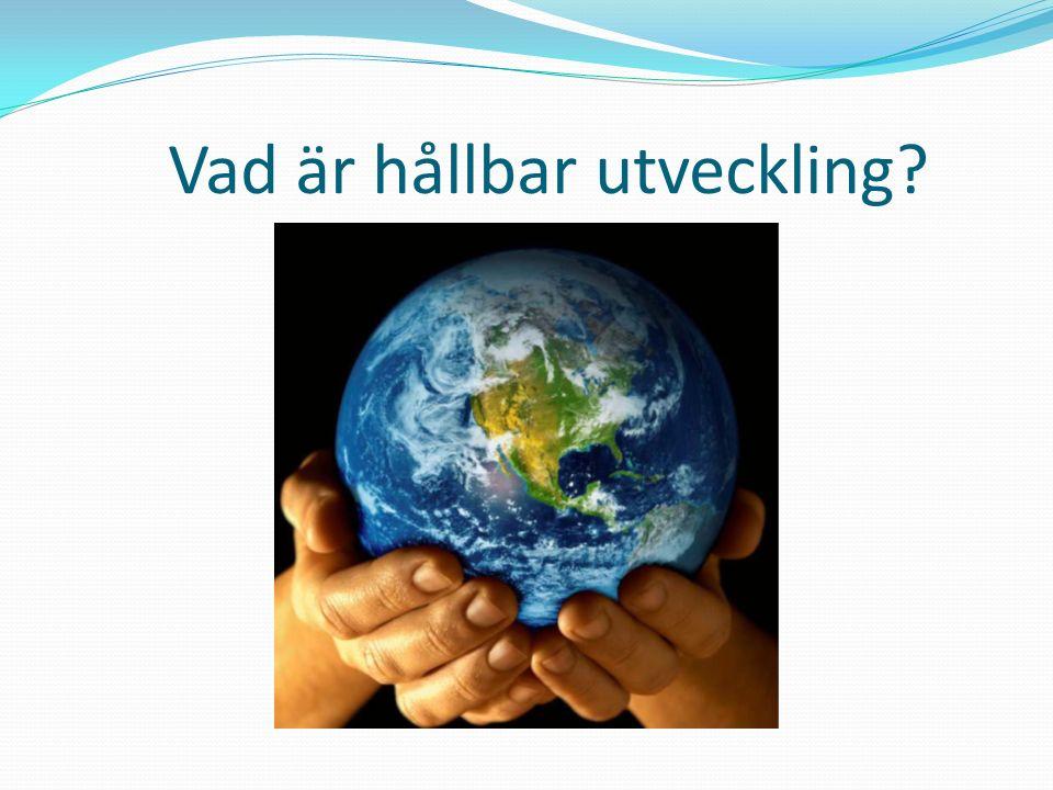 Vad är hållbar utveckling