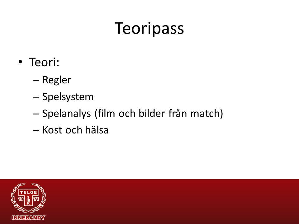 Teoripass Teori: Regler Spelsystem