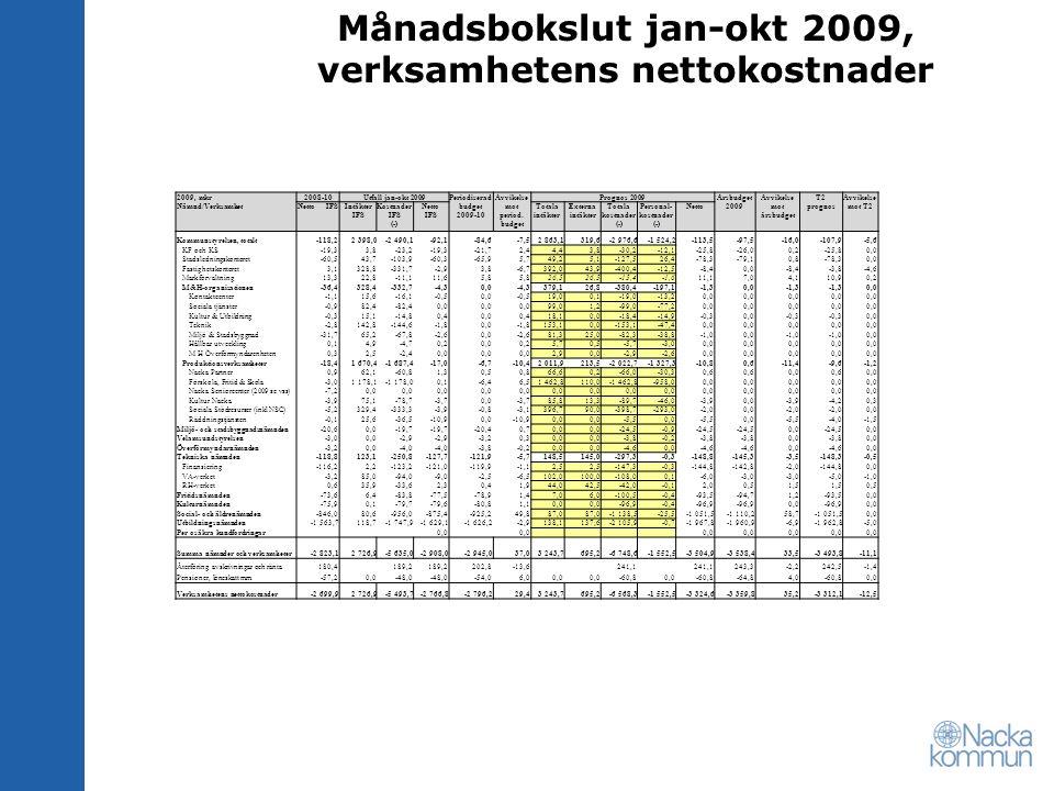 Månadsbokslut jan-okt 2009, verksamhetens nettokostnader