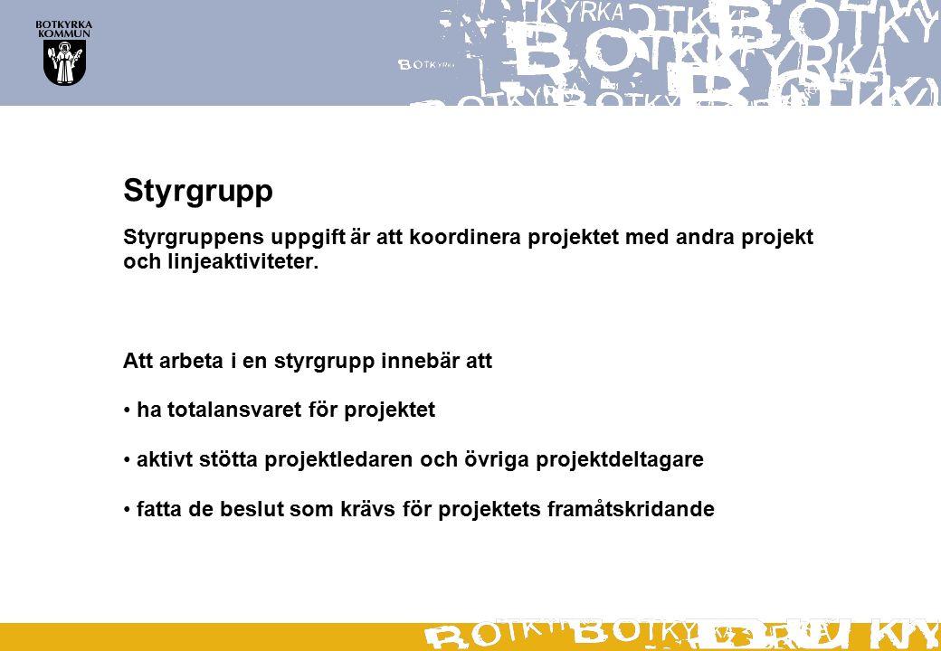 Styrgrupp Styrgruppens uppgift är att koordinera projektet med andra projekt och linjeaktiviteter.