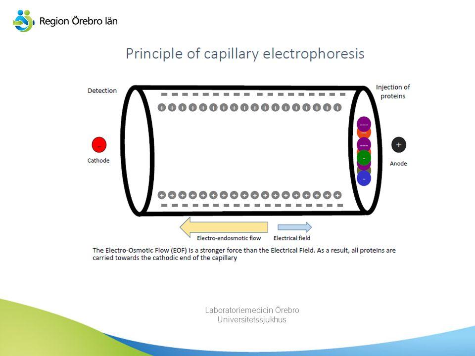 Vad är kapillärelektrofores