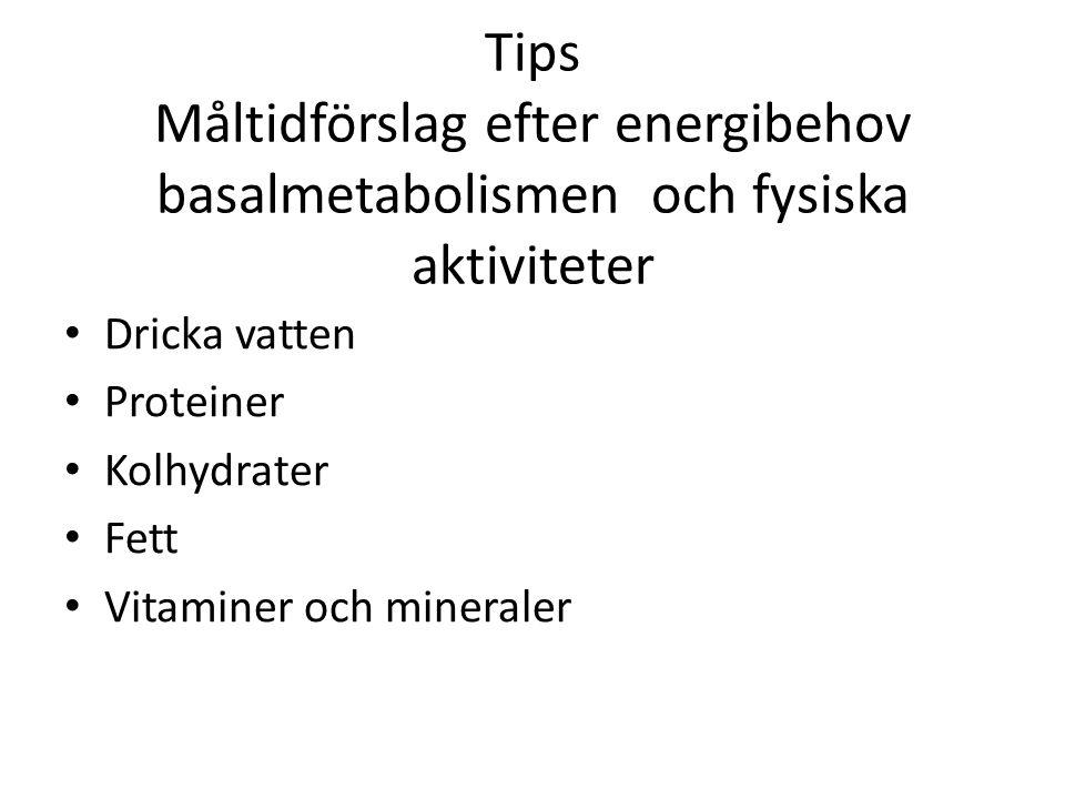 Tips Måltidförslag efter energibehov basalmetabolismen och fysiska aktiviteter