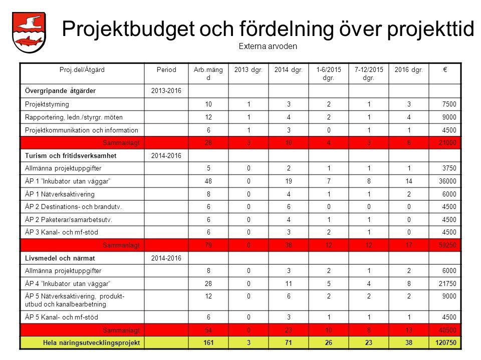 Projektbudget och fördelning över projekttid Externa arvoden