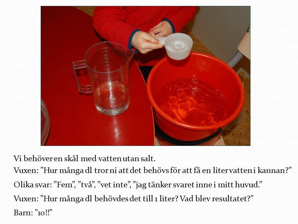 Vi behöver en skål med vatten utan salt.