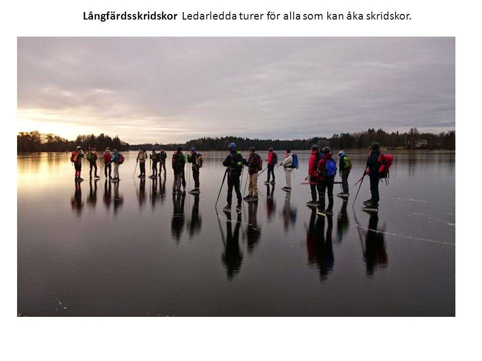 Långfärdsskridskor Ledarledda turer för alla som kan åka skridskor.
