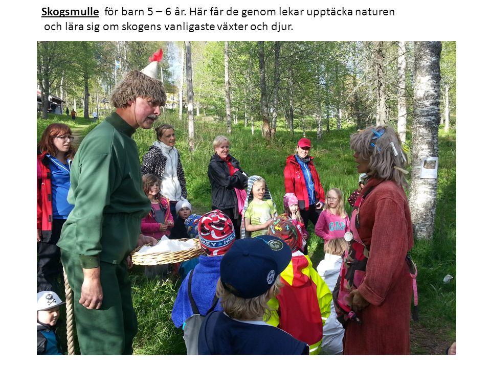 Skogsmulle för barn 5 – 6 år. Här får de genom lekar upptäcka naturen