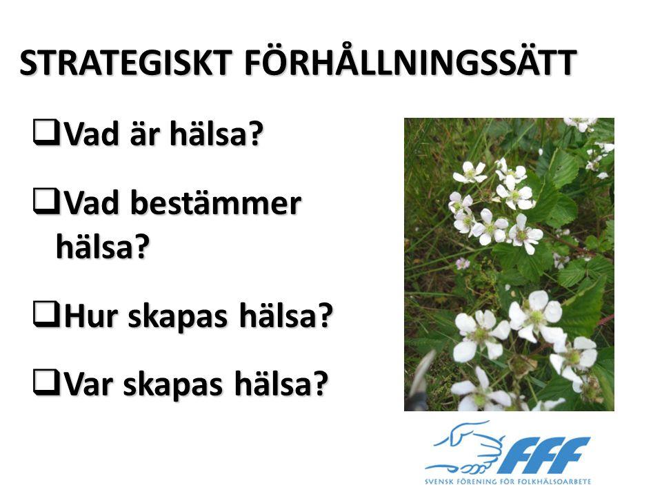 STRATEGISKT FÖRHÅLLNINGSSÄTT
