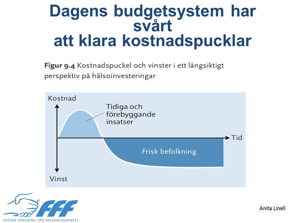 Dagens budgetsystem har svårt att klara kostnadspucklar