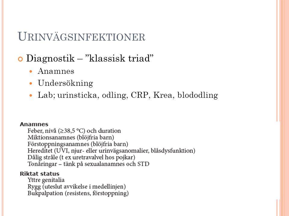 Urinvägsinfektioner Diagnostik – klassisk triad Anamnes Undersökning