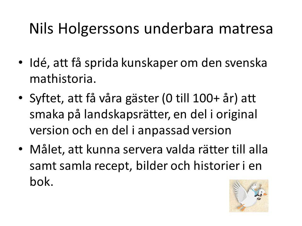 Nils Holgerssons underbara matresa