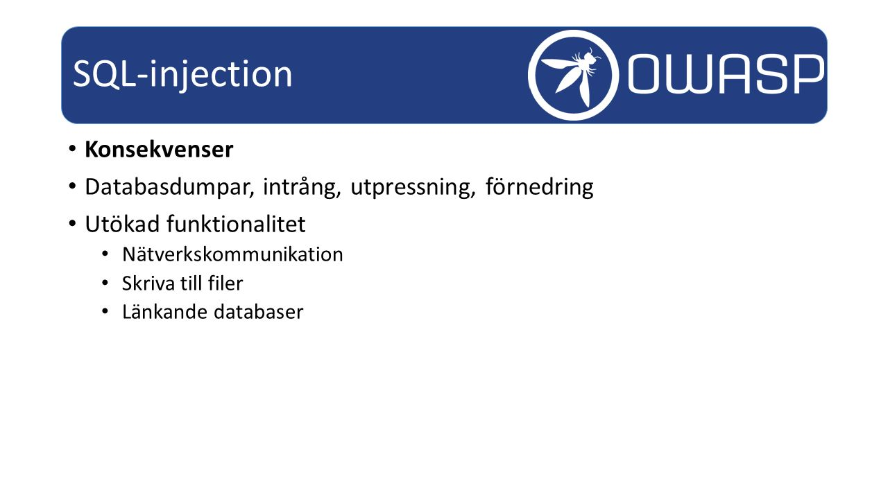 SQL-injection Konsekvenser
