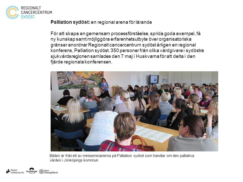 Palliation sydöst: en regional arena för lärande
