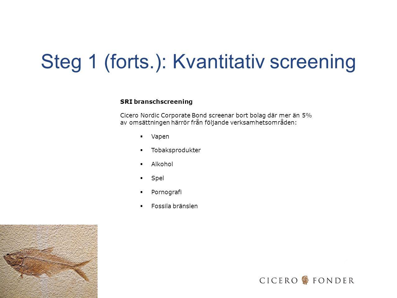 Steg 1 (forts.): Kvantitativ screening