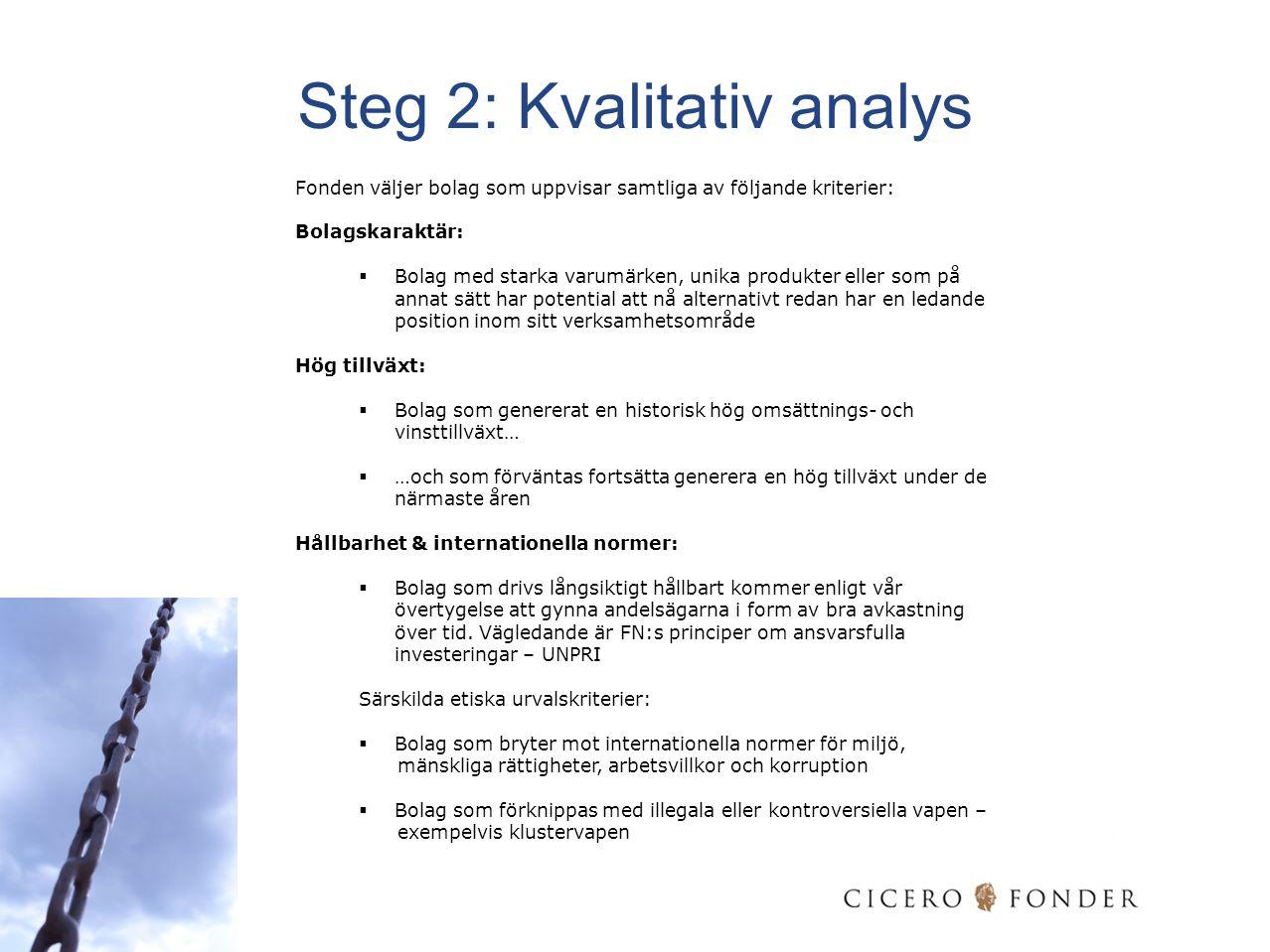 Steg 2: Kvalitativ analys