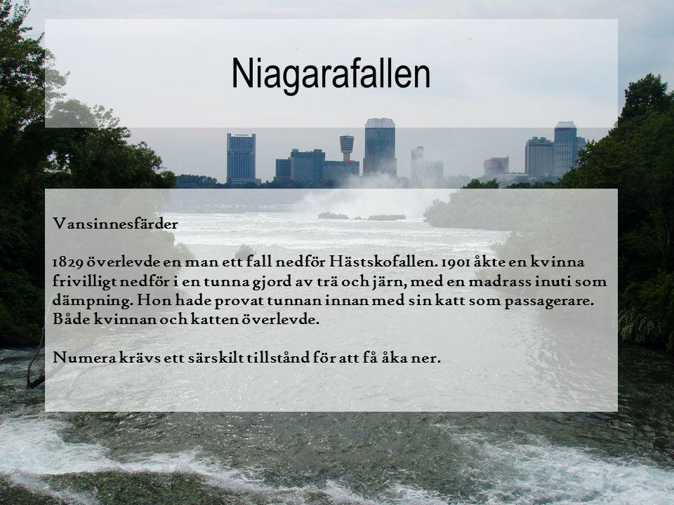 Niagarafallen Vansinnesfärder