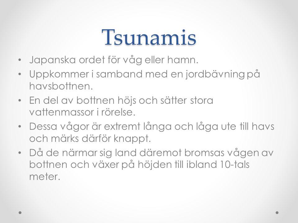 Tsunamis Japanska ordet för våg eller hamn.