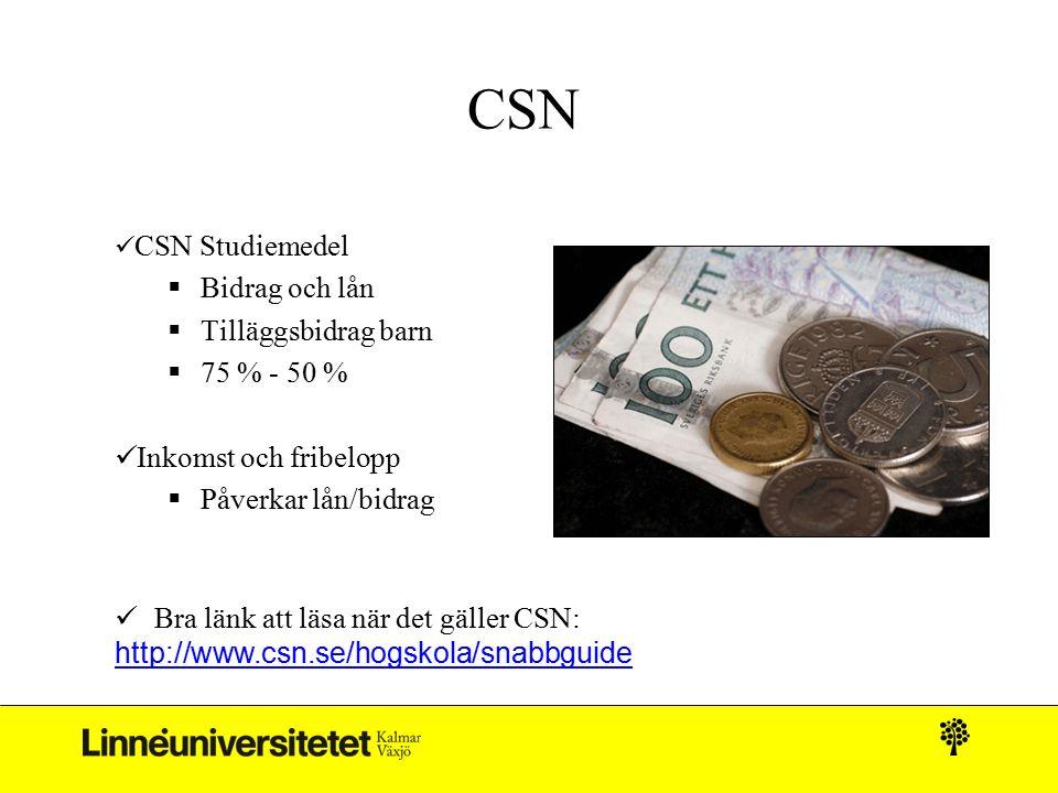 CSN Bidrag och lån Tilläggsbidrag barn 75 % - 50 %